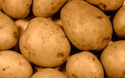 Potatoes worth one billion dollars to P.E.I.