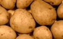 Potatoes worth one billion dollars to P.E.I.