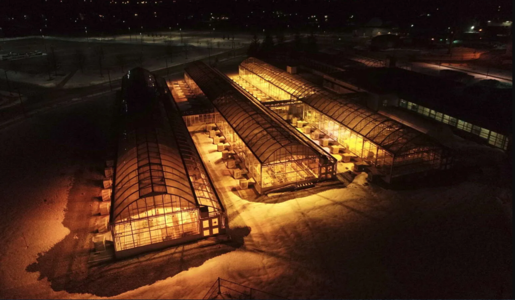 University of Guelph project looks at greenhouse light leaks